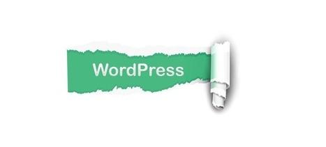 Argos Infotech: WordPress is a Good Option for your Business | Website Development | Scoop.it
