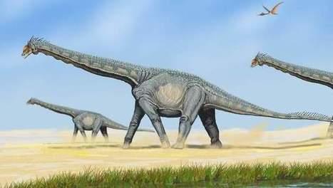Nieuwe dinosaurussoort in China ontdekt: de Yongjinglong datangi | KAP_WalravensM | Scoop.it