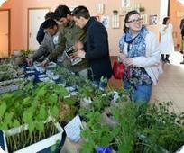 myfruit . news: Caab . Vegetabilia 2015 tra sostenibilità ed ...