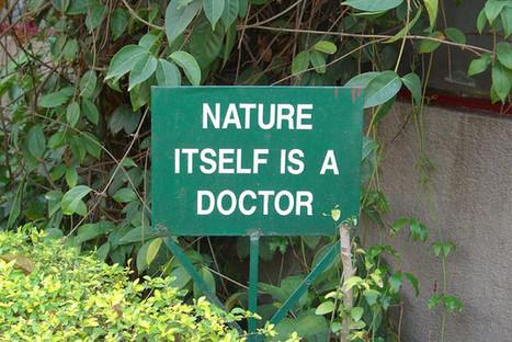 Manger selon la naturopathie : les associations alimentaires | Massage-Bien-Être | Scoop.it