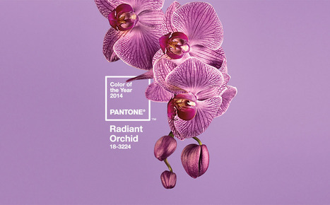 PANTONE Color of the Year 2014 Radiant Orchid 18-3224 - Color Formulas, Guides & Products | e-Development | Scoop.it