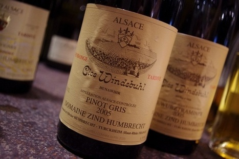 The wines of Zind Humbrecht, Alsace | Wine website, Wine magazine...What's Hot Today on Wine Blogs? | Scoop.it