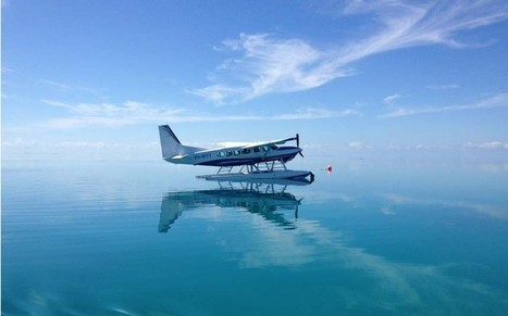Outback Odyssey: The Great Barrier Reef - Telegraph.co.uk | Social Sciences | Scoop.it