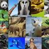 Protection de la biodiversité
