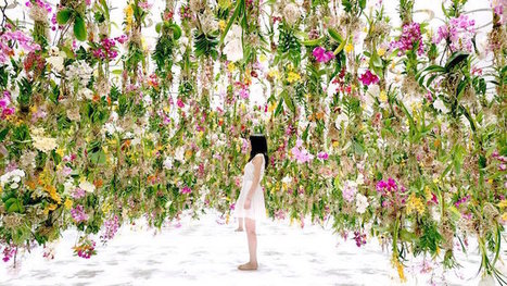 2,300 Floating Flowers Move to Greet Visitors in Interactive Installation | Le It e Amo ✪ | Scoop.it
