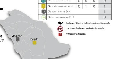 Avian Flu Diary: Saudi MOH Announces 1 New Asymptomatic MERS Case In Riyadh | MERS-CoV | Scoop.it