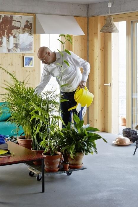 What Cohousing Looks Like: Inside Berlin's Radical R50 Baugruppen Project | Senior Cohousing: vejez autogestionada y apoyo mútuo | Scoop.it