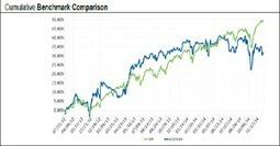 Robin Hood Minor Asset Management | Peer2Politics | Scoop.it