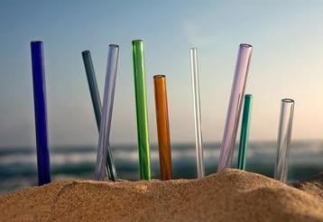 Sustainable Straws   Plastic Pollution   Scoop.it