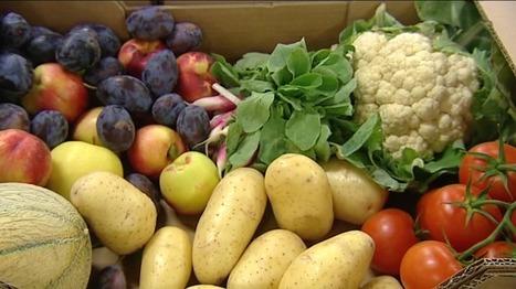 Fruits et légumes plus chers ? La météo a bon dos - France 3 Aquitaine | Agriculture en Dordogne | Scoop.it