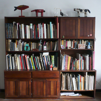 Your Shelves! | Random cool stuff about libraries | Scoop.it