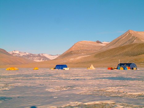 Antarctique : des bactéries survivent à 3 millénaires d'isolement ! | Merveilles - Marvels | Scoop.it