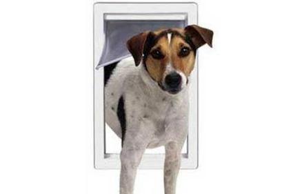 Top 10 Best Dog Doors Reviews | Best Product Reviews | Scoop.it