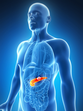 """MD Anderson President DePinho Co-Lead Author On New Study Into Pancreatic Cancer Resistance 