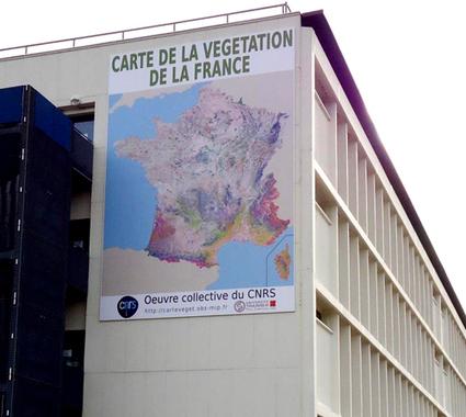 Plus de 45 années de cartographie végétale de la France rassemblées en une carte numérique unique | Faire Territoire | Scoop.it