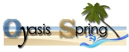Web Marketing Services | Web Development Services | Oyasis Spring | Khakhra | Scoop.it