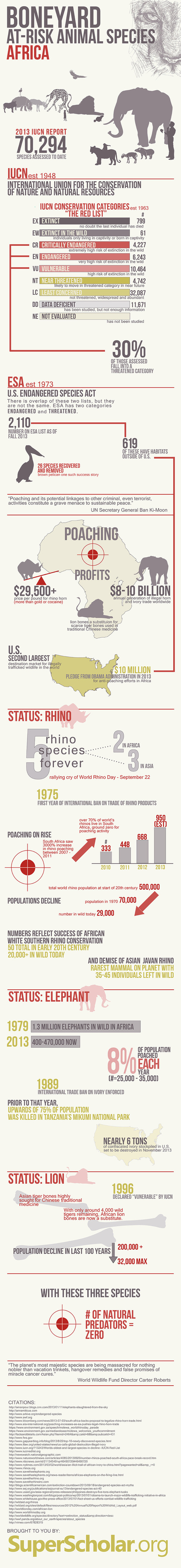 Animal Species At Risk in Africa | Wildlife Trafficking: Who Does it? Allows it? | Scoop.it