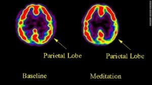 Neuroscience and Buddhist Meditation   Contemplative Science   Scoop.it