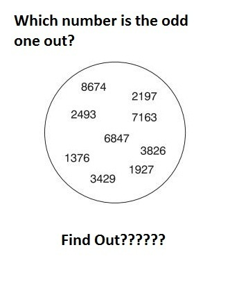 Find The Odd One Out??? | SSC coaching institute in delhi | Scoop.it