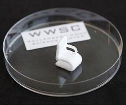 Cellulose from wood can be printed in 3-D | More Commercial Space News | Scoop.it