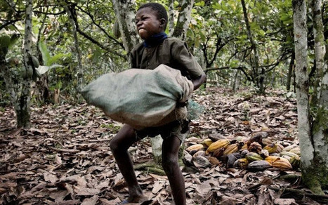 Stop Supporting Child Slavery By Avoiding These 7 Companies | fair trade chocolate | Scoop.it