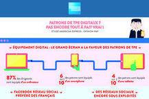 Les patrons de TPE sous-exploitent les réseaux sociaux et l'e-commerce | e-Veille : Social Media, Marketing, NTIC ... | Scoop.it