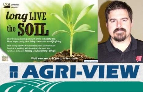 Les couverts végétaux améliorent la santé des sols, cela se voit dans les quantités de carbone labile POxC. | MOF Matière Organique Fugace réactive du sol | Scoop.it