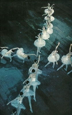 The Royal Danish Ballet National Geographic 1974 | DANCE | Scoop.it