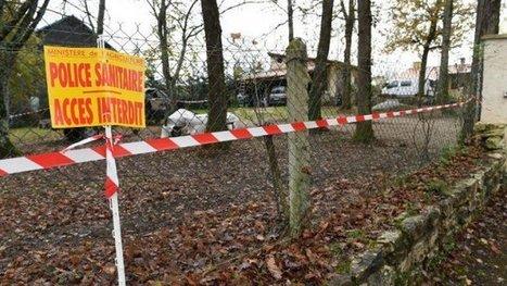 Grippe aviaire en Dordogne : le point sur la situation | Agriculture en Dordogne | Scoop.it