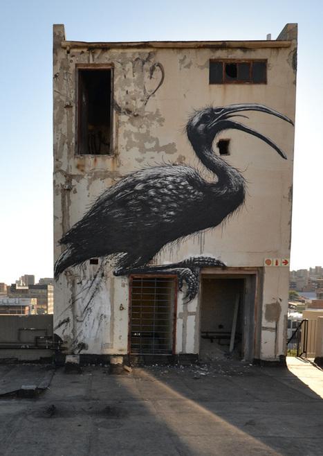 ROA in the UK, USA, Norway, Puerto Rico, South Africa - unurth | street art | Géographie : les dernières nouvelles de la toile. | Scoop.it