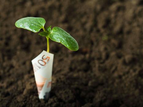 Fraude à la TVA sur les quotas carbone | Impôts et économie | Radiopirate | Scoop.it