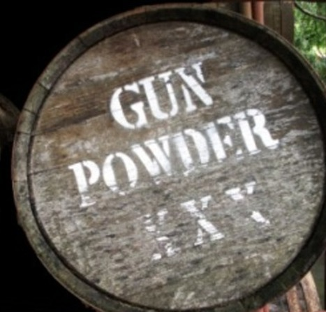 How to make gunpowder in the wild (all it takes is charcoal, sulfur, and potassium nitrate) | Brian's Science and Technology | Scoop.it