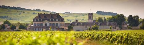 Le Château de Pommard annonce son projet de conversion du Clos Marey-Monge à la biodynamie. | Le Vin et + encore | Scoop.it