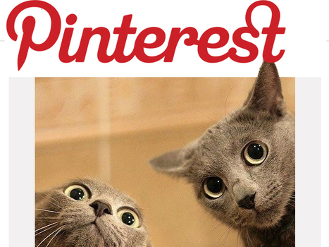 Is Pinterest Right For Your Brand? | Super Social Media | Scoop.it