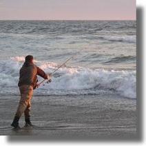 Surf Casting Reels | Surf Fishing | Scoop.it