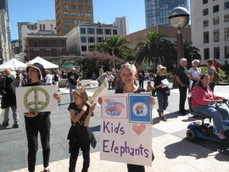 San Francisco March for Elephants - lovetheplanet | wildlife conservation :Love The Planet | Scoop.it