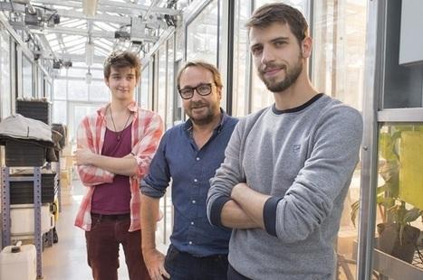 Le Greenlab plante le décor écoinnovant de l'UPMC -Université Pierre et Marie CURIE - Sciences et Médecine - UPMC - Paris   Agriculture urbaine, architecture et urbanisme durable   Scoop.it