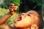 PopulationData.net : 08 mars 2012 - OMD : l'objectif de l'accès à l'eau est atteint | twittgéo | Scoop.it