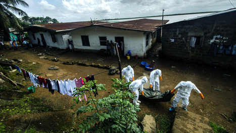 They Are The Body Collectors: A Perilous Job In The Time Of Ebola | Writing, Research, Applied Thinking and Applied Theory: Solutions with Interesting Implications, Problem Solving, Teaching and Research driven solutions | Scoop.it