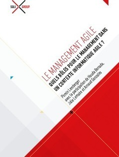Livre Blanc - Le management agile | Le dsi agile | Scoop.it