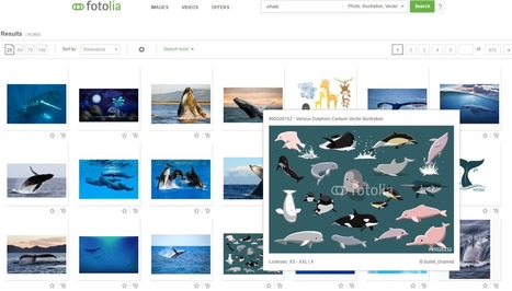 IMAGES: We are proud to announce our affiliation with Adobe Fotolia | | TEACHER TEACHER | Scoop.it
