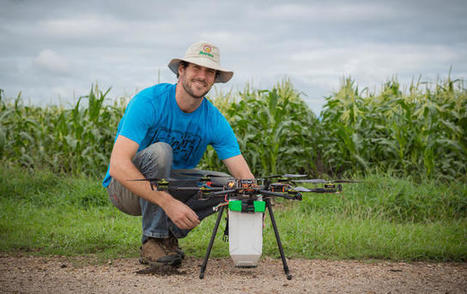 Drones Are Now Delivering Bugs To Farms To Help Crops | Unmanned Aerial Vehicles (UAV) | Scoop.it
