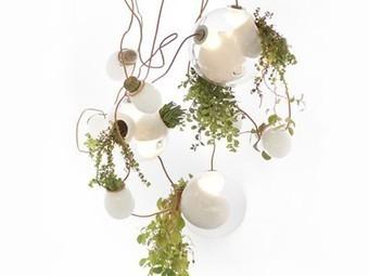 Living Planter Chandelier Combines Lighting with Cacti | Vertical Farm - Food Factory | Scoop.it