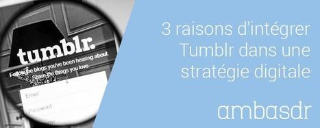 3 raisons d'intégrer Tumblr dans une stratégie digitale | Clic France | Scoop.it