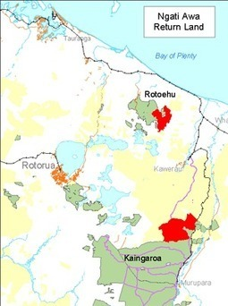 Foreign investor buys into Kaingaroa Forest | Timberland Investment | Scoop.it