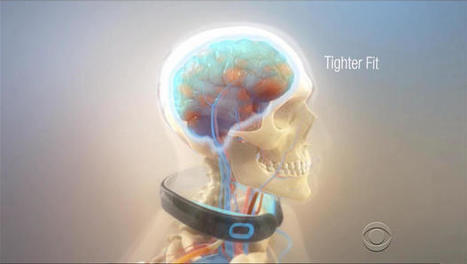 Device to protect brain from concussions inspired by birds | Paradigm Shifts - JS | Scoop.it