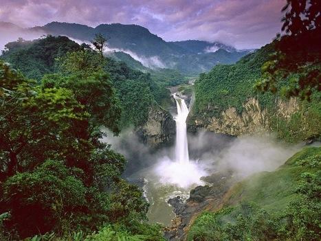 Kumpulan Gambar Hutan Paling Indah Dari Seluruh Dunia   Pemanasan Global   Scoop.it