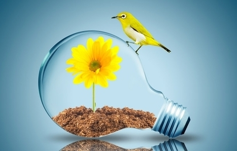 Finding Growth By Changing Your Mindset | Building Innovation Capital | Scoop.it