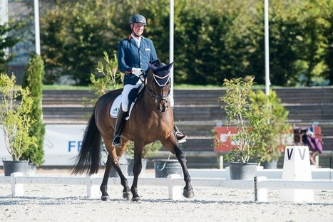 FEI European Para-Equestrian Dressage Championships: Orange is the new gold as The Netherlands top the medal table | FEI | Dressage Dreams | Scoop.it