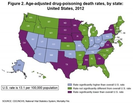 Drug-Overdose Deaths Have More Than Doubled in the U.S. | Upsetment | Scoop.it